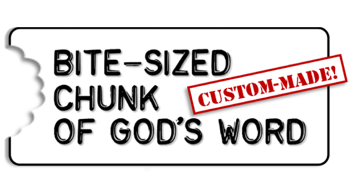 Bite-Sized-Chunks-Custom-Logo