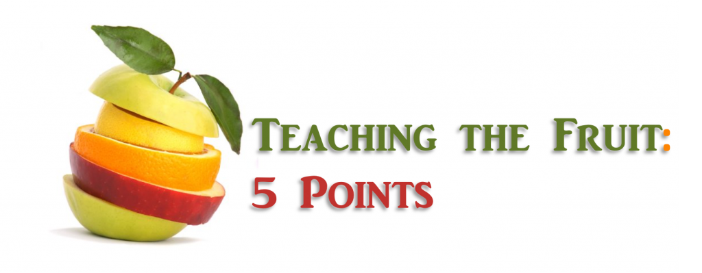 Teaching the Fruit: 5 Points